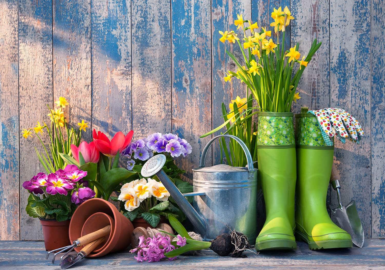 Floricoltura Tres Piante accessori da giardino Marostica Vicenza