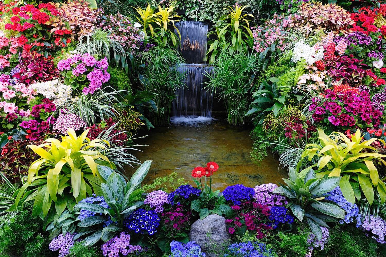 Floricoltura Tres Piante Fiori accessori da giardino Marostica Vicenza